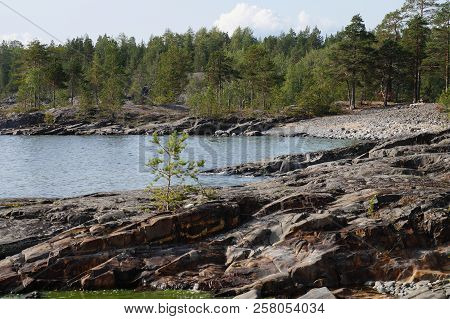 Rocky Shore Of The Lake Bay With Coniferous Forest. Clear Sunny Summer Day.