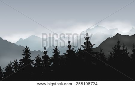 Vector Illustration Of Mountain Landscape With Coniferous Forest Under Gray Sky With Clouds And Mist