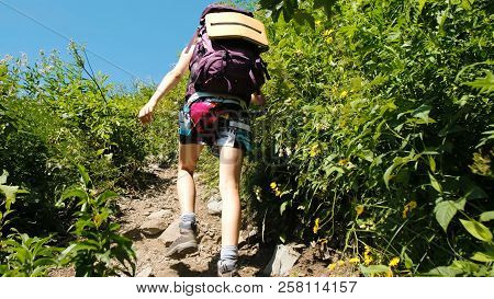 Woman Hiker Tourist Climbs Uphill In A Hiking Trip With Beautiful Scenery. Girl With A Backpack On T