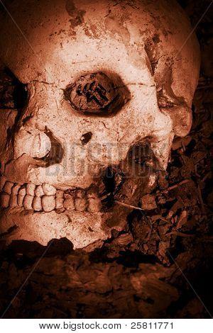 Battle Skull