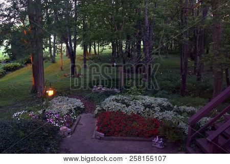 Fireflies Lightning Bugs Golden Yellow Streaks In A Backyard Woods Forest After Sunset At Night In S