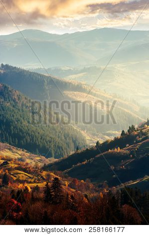 Beautiful Afternoon In Mountains. Lovely Autumn Weather. Nearest Forest In Colorful Foliage. Distant