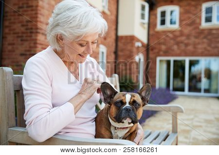 Senior Woman Sitting On Bench With Pet French Bulldog In Assisted Living Facility