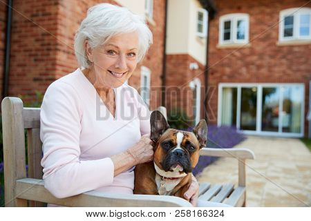 Portrait Of Senior Woman Sitting On Bench With Pet French Bulldog In Assisted Living Facility
