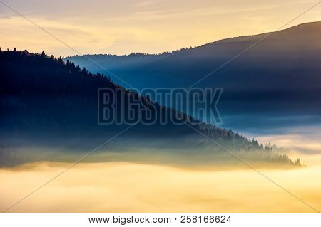 Thick Fog Above The Valley At Sunrise. Beautiful Autumn Background In Mountains. Lovely Nature Abstr