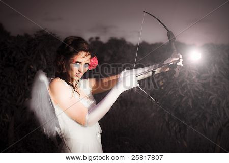 Cupid With Bow And Rose Arrow
