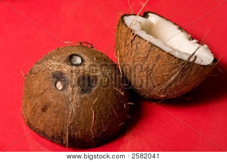 exotic fruit series: broken coconut on the red background poster