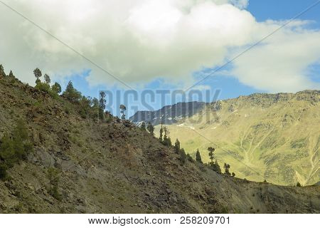 Rare Forest On The Ridge And Valley