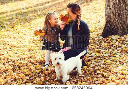 Mother, Daughter And Their Dog Having Fun In The Autumn Park Among The Falling Leaves. Walk In The A