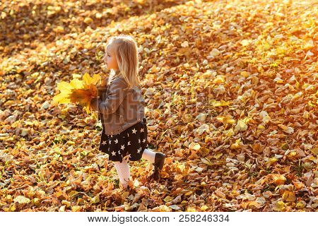 Cute Little Girl Playing With Fallen Golden Leaves. Happy Child Walking In Autumn Park. Beautiful Go