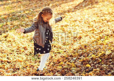Happy Child Walking In Autumn Park. Baby Girl Throwing The Fallen Leaves Up. Beautiful Golden Autumn
