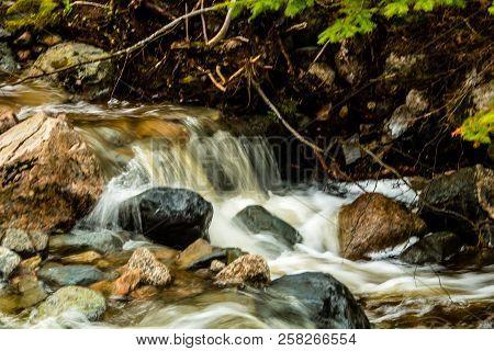 Mattie Mitchell Creek, Gros Morne National Park, Newfoundland, Canada poster