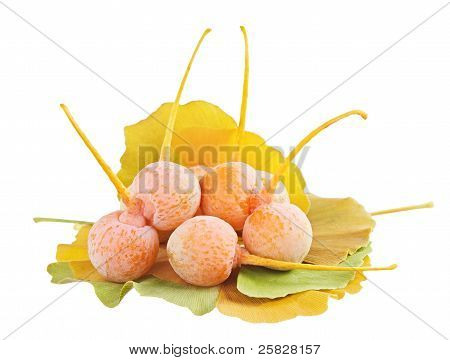 Ginkgo Biloba Fruits Heap Over Leaves Isolated On White