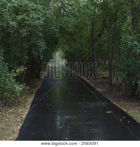 Black Asphalt Road After Rain
