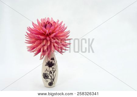 A Large Pink Dahlia Flower In A Small Vase.