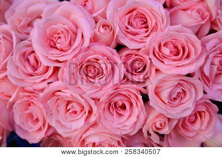 Set of bouquet pink rose