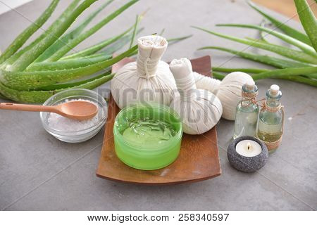 Spa setting with aloe vera plant , herbal, ball ,cream, spoon, bowl,oil on gray background
