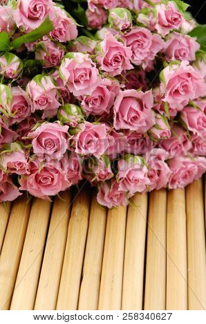 pink branch rose on bamboo mat background