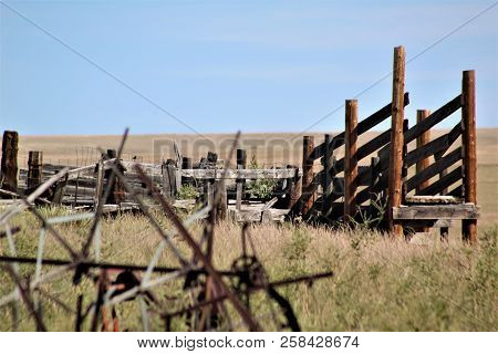 The Ruins Of An Old Cattle Chute Stand Alone In A Field Behind An Abandoned Farm In Colorado.