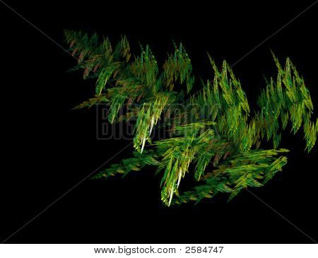 Fractal Fern Leaf