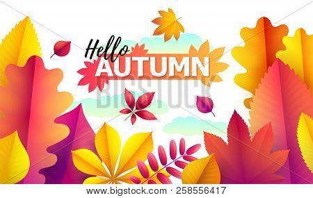 Text Hello Autumn, Discounts From 50. Autumn Seasonal Sale. Up To 50 Off. Vector Background Of Brigh