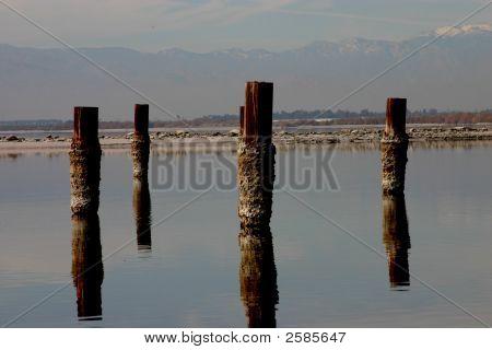 Posts Of The Salton Sea