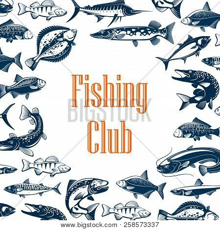 Fishing Club Poster With Sea And River Fish Frame. Blue Marlin, Tuna And Salmon, Carp, Mackerel And