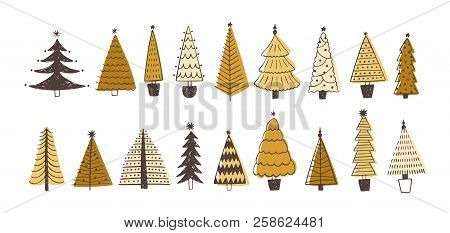 Set Of Various Firs, Pines Or Spruces Decorated With Baubles. Bundle Of Winter Coniferous Forest Chr