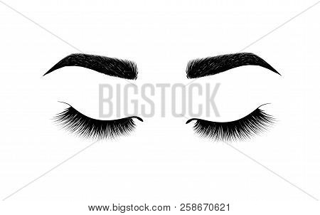 Eyebrow Perfectly Shaped. Permanent Make-up And Tattooing. Cosmetic For Eyebrows. Eyelash Extension.