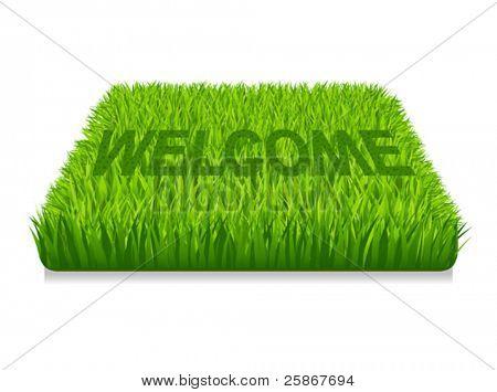 Welcome. Doormat of the green grass