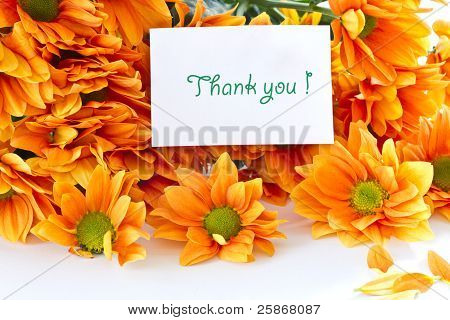Orange Blumen Chrysantheme