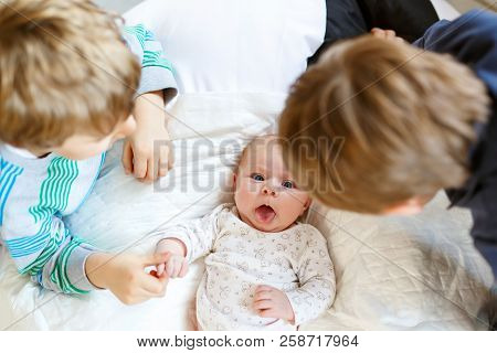 Two Little Kids Boys Playing With Newborn Baby Sister Girl