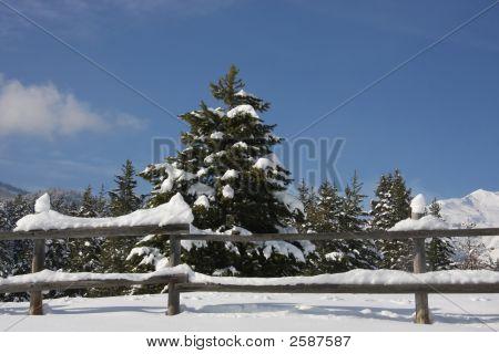 Snow And Sky 3