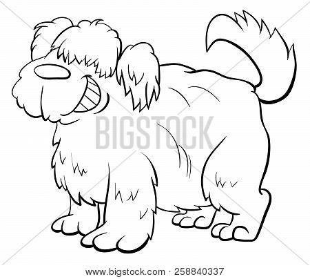Shaggy Sheep Dog Character Coloring Book