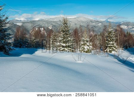 Picturesque Winter Morning Mountains View From Young Fir And Birch Forest. Skupova Mountain Alpine S