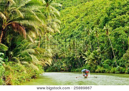 Cruising boat on Rainforest River