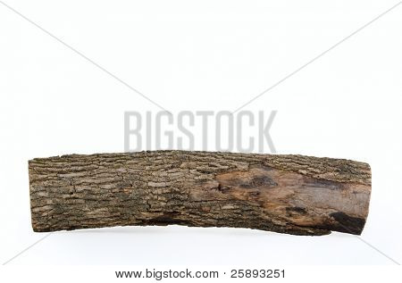 Close-up of wooden log stub isolated on white background