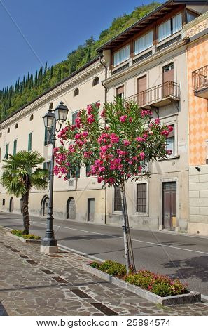 Street in a small mediterranean town with flower trees, Toscolano, Italy