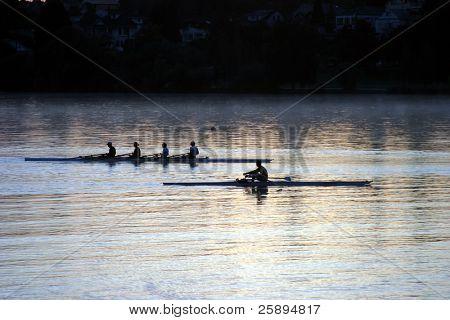 people rowing on