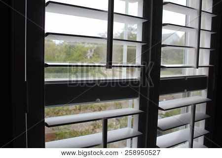 Angled Open White Plantation Shutters With Neighborhood View