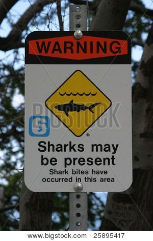"a ""Warning sharks may be present sign"" letting surfers and swimmers know if they are not careful they may become a sharks lunch (like a butterfly to a preying manits) showing the circle of life"