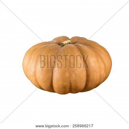 Sideview Of Single Pumpkin Isolated In White Background.