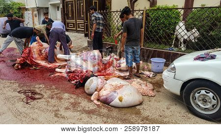 People Slaughtring Animals On Eid Ul Azha, On Streets Of Karachi, Pakistan, 22/08/2018