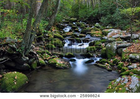 A small stream runs through the Smokey Mountains. poster