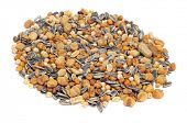 a lot of salted mixed roasted nuts, as peanuts, corn seeds, chickpeas and sunflower seeds poster
