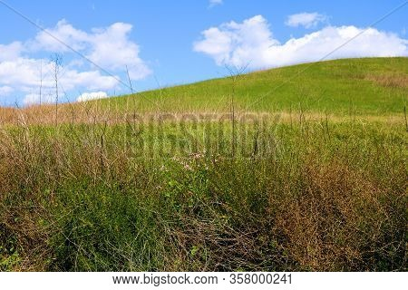 Lush Green Hills With Grasslands And Wildflowers On A Prairie Taken At A Grassy Plain In Chino Hills
