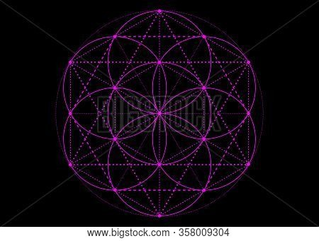 Seed Of Life Symbol Sacred Geometry. Pink Mystic Mandala Of Alchemy Esoteric, Flower Of Life. Vector