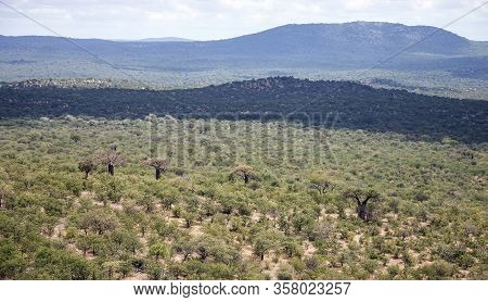 Green Hills Of Africa With The Savannah And The Baobab Trees. View Of The Landscape Of African Expan