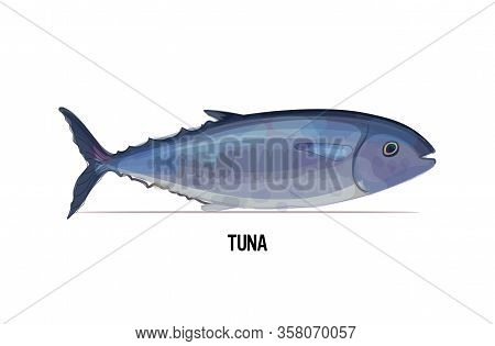 Fresh Tuna Fish Isolated On White Background Seafood Concept Horizontal Vector Illustration