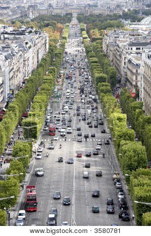 Avenue Des Champs